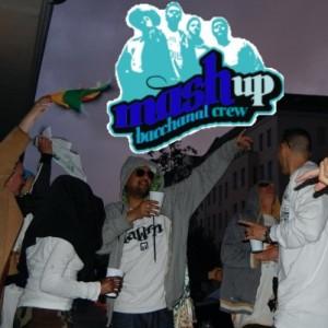 MashUp Plus 20090622